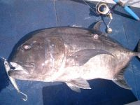fishing07_053