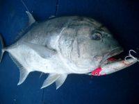 fishing07_065