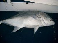 fishing07_069
